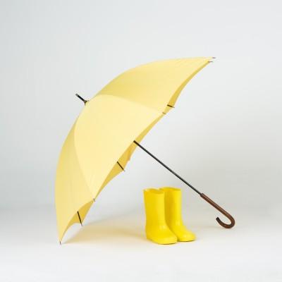 세계지도 3단우산